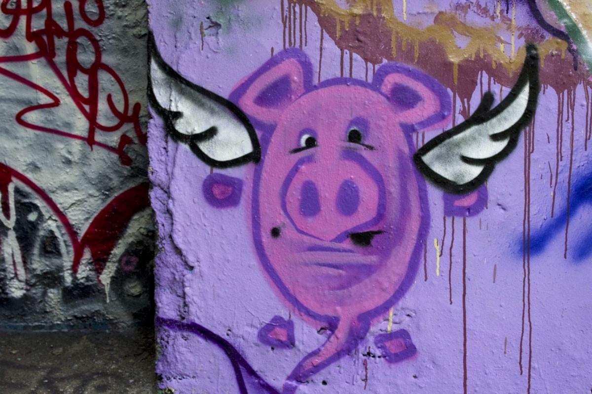 Graffiti Schwein mit Flügeln